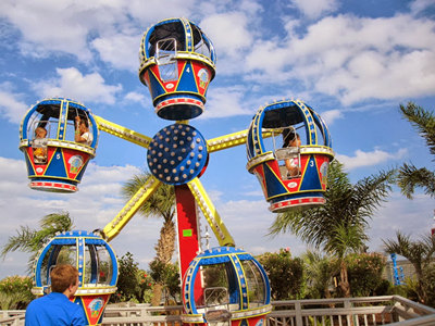 Mini kids Ferris Wheel for sale